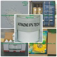 Cheap Atrazine 97%TC WDG WP DF.Non-Selective Herbicide CAS 1912-24-9 for sale