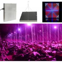 Best 45 W Full Spectrum LED Grow Lights For Hydroponics , 50~60Hz Frequency wholesale