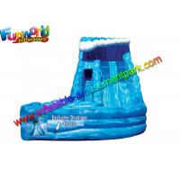 Quality Special Monster Outdoor Inflatable Water Slides With Landing / Inflatable Air Sliding wholesale
