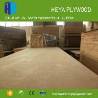 Best Construction material 8 - 18 mm plywood 8x4 China manufacturer wholesale
