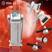 Best Body Slimming Cryolipolysis Fat Freeze Slimming Equipment for fat lose spa / clinic wholesale