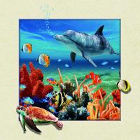 Best Home Wall Decoration Custom Lenticular Printing 5d Depth 20 x 20cm Dolphin Poster wholesale