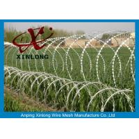 Best Hot dipped galvanzied Concertina Razor Blade Barbed Wire Coil Diameter 500mm wholesale