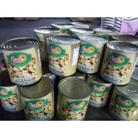 Canned Whole Mushroom In Tins 24*425ml / NW. 425g DW. 200g 180g or Big Size