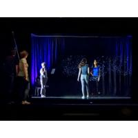 Best 3D Projection System 3D Holographic Display Hologram Stage Show Pepper Ghost Technology wholesale