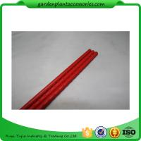 Cheap PE Coated Metal Garden Plant Stakes 8mm Diameter , 75cm Length Metal Garden Stakes  Lengt  Dia:11mm  Dia:11mm for sale