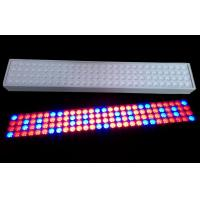 Cheap 50 W SMD LED Tube Grow Lights 900mm Length With 50~60Hz Frequency for sale
