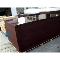 Best 610X2500mm film faced plywood wholesale