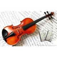 Best NEW Humigic Super Acoustic Violin Case Humidifier Powder Apperance wholesale