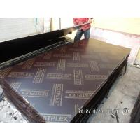 Best AAA film faced plywood wholesale