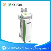 Best Cryolipolysis Slimming Equipment with Color Apperance wholesale