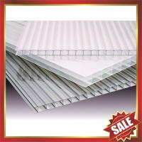 Hollow polycarbonate panel