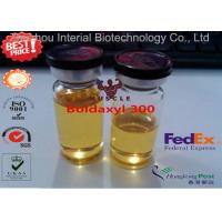 Best Boldaxyl 300 Legal Injectable Steroids , Semi Finished Equipoise Steroid For Horses wholesale