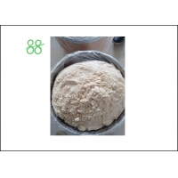 Best White Powder Pyridaben 20%WP Tick Insecticide wholesale