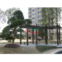 Best UV Resistance Prefab Pergola Kits , Recyclable 100% Ready Made Pergola Color Stability wholesale