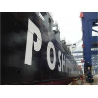Best Ocean Freight Forwarder Services to Australia,New Zealand wholesale