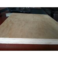 Best Xuzhou Chinese Professional Plywood Manufacturer wholesale