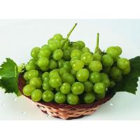 China Paclobutrazol 95% TC/use for Grape/fruit on sale