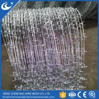 Manufacture high quality sharp galvanized barbed wire