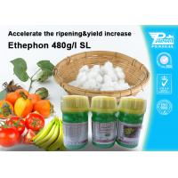Best Ethephon 48% SL Plant Growth Regulators To Promote Pre - Harvest Ripening 16672-87-0 wholesale