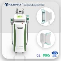 China Vertical Cryolipolysis machine therapy venus cryolipolysis fat freezing machine on sale