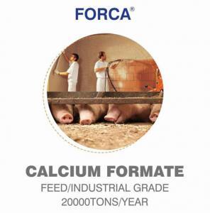 China Calcium formate for skim coat on sale