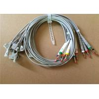 Best Philips / HP EKG Cable With 10 Lead Wires 2 Pin Connector Grey Color wholesale
