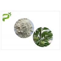 China Anti Cancer Ursolic Acid Powder , CAS 77 52 1 Persimmon Leaf Extract Dietary Supplement on sale