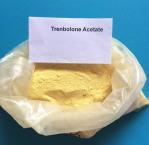Best CAS 10161-33-8 Trenbolone Steroids , Injectable Parabolan Trenbolone Enanthate for Bodybuilding wholesale