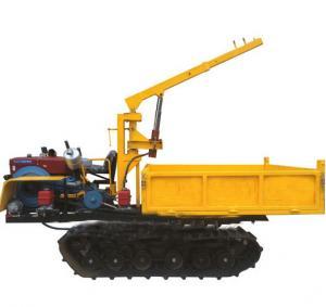 Best Manufacturer Supply Crawler Lorry-Mounted Crane, Paddy Field Truck, Farm Transporter, Crawler Crane wholesale