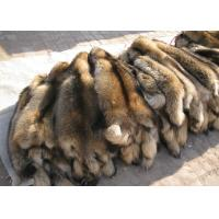 Best 100% Real Natural Raccoon Fur Pelt Detachable Lush Soft For Clothes Hood wholesale