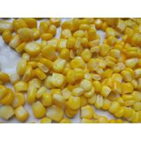Best Canned Corn Factory Non GMO Canned Corn Canned Sweet Corn In Tin A10 wholesale