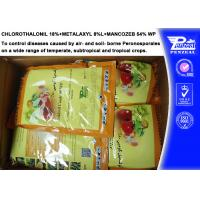 Cheap Systemic Fungicide Chlorothalonil 18% + Metalaxyl 8% + Mancozeb 54% WP for sale