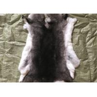 Best Light Grey Rex Rabbit Fur Neck Warmer , Real Rex Rabbit Pelts Skin For Plate Blanket wholesale