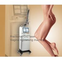 Best Sincoheren Fractional Co2 Laser Scar Removal Machine Acne Treatment Vigina Tightening Machine wholesale