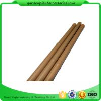 Best Heavy Duty Bamboo Garden Stakes , Round Bamboo Stakes For Garden wholesale