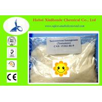 Anabolic Steroid Hormones Testosterone Isocaproate  Muscle Growth 15262-86-9