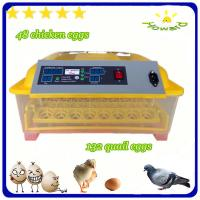 Best Christmas promotion price $39 full automatic mini chicken egg incubator of YZ8-48 wholesale