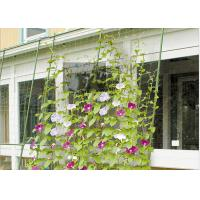 Best Green Classic Garden Plant Trellis PE Coated Steel For Climbing Flowers wholesale