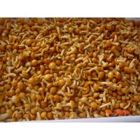 Best IQF New Crop  Frozen Fruits And Vegetables Forest Nameko Mushroom Whole Part wholesale