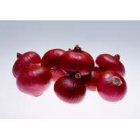 Fresh red onion, organic onion 5.0cm up rose onion peeled onion, white onion,spicy