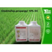 Best Grass Selective Herbicides Clodinafop-propargyl 10% EC Cas No. 105512-06-9 wholesale