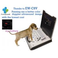 Quality Easywell Color Doppler veterinary ultrasound EW-C8V with micro-convex probe for vessel and hearts and abdomen of animals wholesale