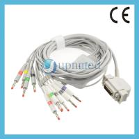 Cheap Siemens Hellige10 lead EKG cable with leadwires; Reusable EKG Cable with for sale