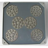 Best Good price explosion-proof LED Flood light wholesale