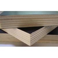 Best Moisture Proof Brown Plywood Wall Paneling / Film Faced Shuttering Ply 2-30mm Thickness wholesale