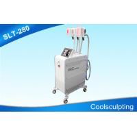 Best Three Handpieces Cryolipolysis Slimming Machine / Coolsculpting Fat Freezing Equipment wholesale