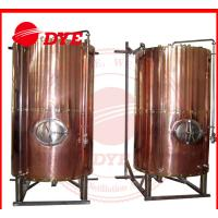 Best DYE Semi-Automatic Mini Bright Beer Tank For Brewery 1 - 3 Layers wholesale