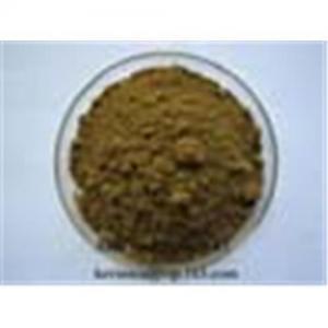 Best Aloe Vera Powder Extracts wholesale