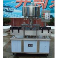 Cheap Rotary Vegetable Oil PET Bottle Filling Machine 3000BPH Stable performance for sale